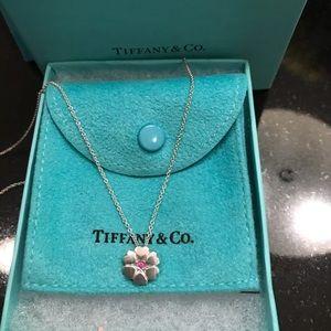 Tiffany & Co. Paloma Picasso Silver Necklace